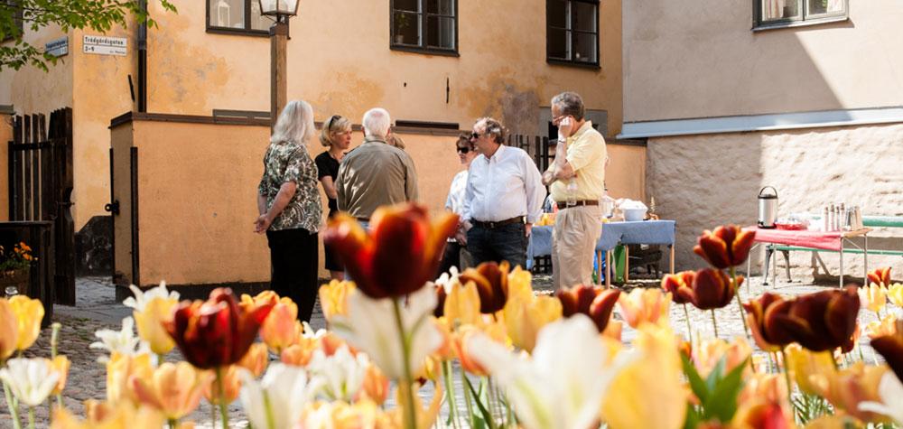 Sorgflor, Skilsmässodike & skokartong - En historisk vandring i Gamla Stan